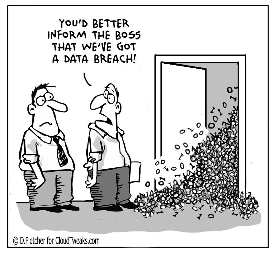 Data Breach Comic